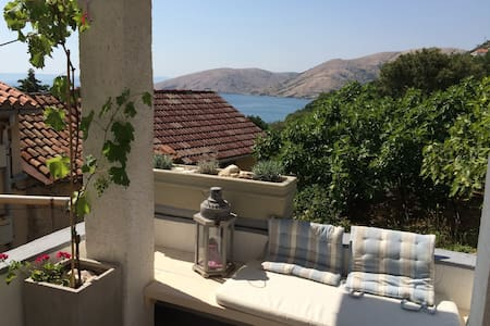 Apartment 50m from the beach - Apartment