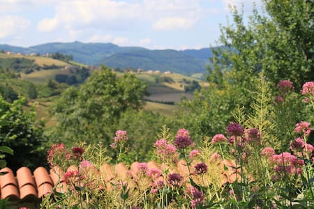 3. Quiet Retreat in the Beaujolais Hills. Room 3 - Rhône