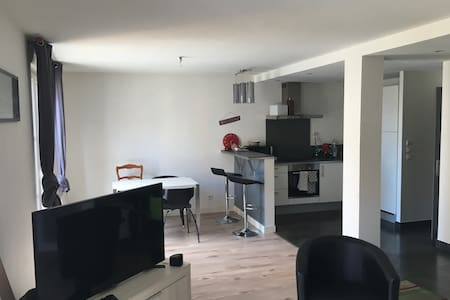 T2 60m2 centre ville - Apartment