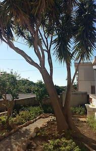 Piccola oasi di pace - Santa Ninfa - House
