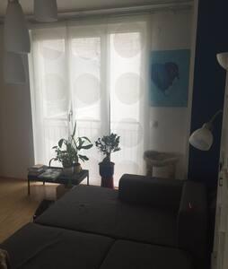 Zimmer in großer sonniger Wohnung - Linz - Apartment