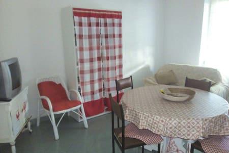 Appartamento in pieno centro Pineto mese di Luglio - Leilighet