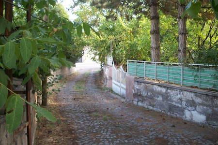 2 katlı bahçeli müstakil ev - Talas