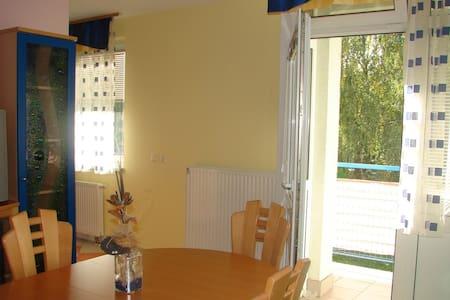 Celje Lava appartment - Celje - Apartment