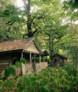 Cabin #1 Fish/Bring Horses/ATV/Kayak - Chilliwack - Cabin