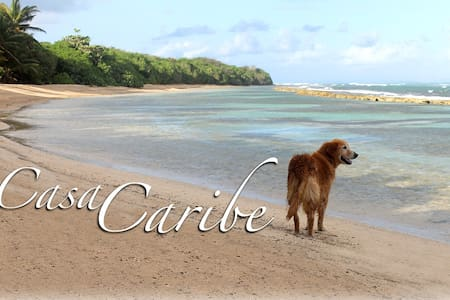 Casa de Caribe-only minutes to secluded beaches... - Santa Maria - Дом