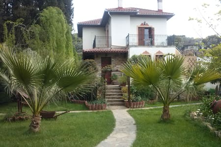 Traditional house, beautiful garden - Dom