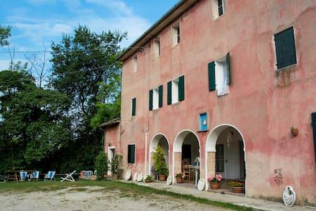 Tra le colline del Prosecco (3 guests) - Flat