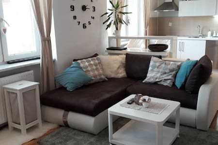 COMFY APARTMENT IN CENTRE OF BRNO - Brno - Apartment