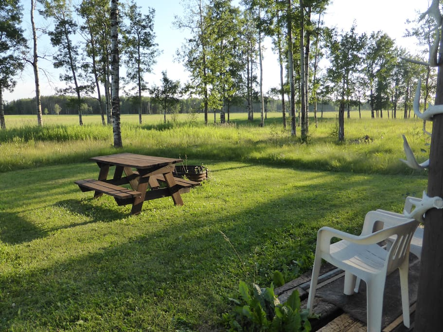 A nice picnic area just outside with great views of the pastures perhaps spotting a moose, white tail deer, sand hill crane or a coyote