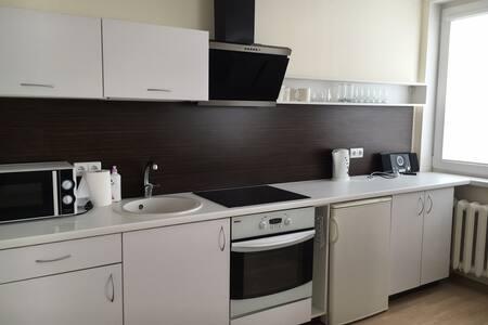 Du draugai - Druskininkai - Apartment