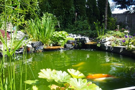 KOI POND AND TEA HOUSE WITH GARDENS - Mill Creek - House