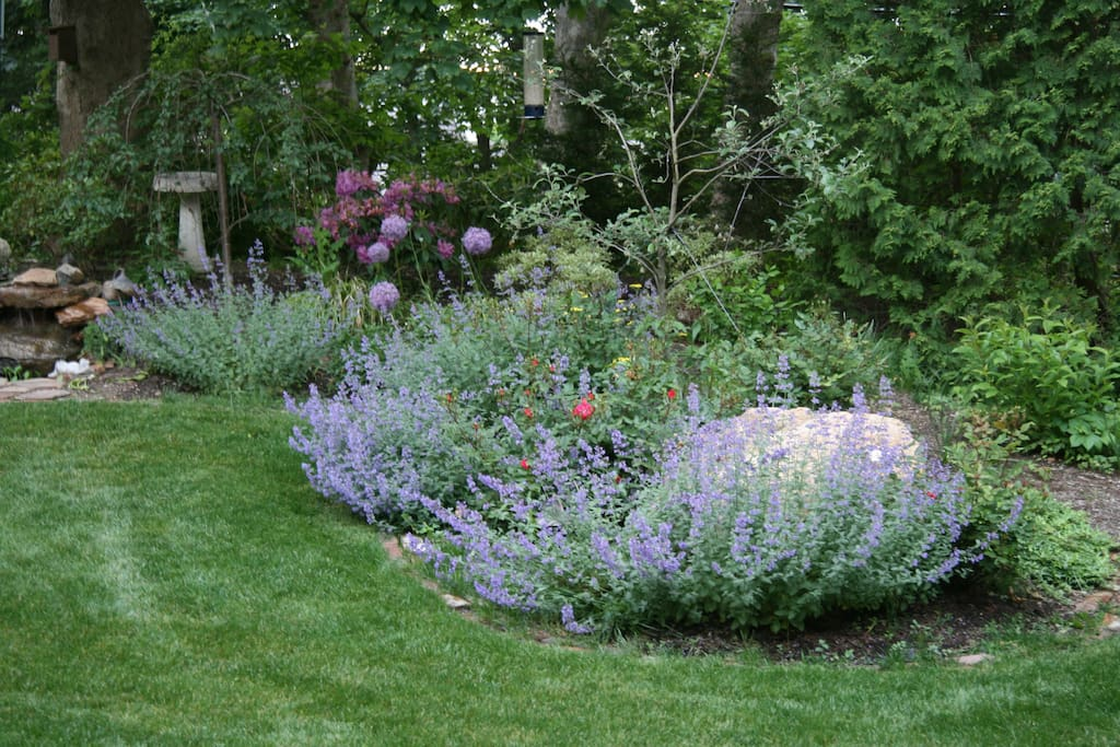 Back yard garden with tiny cottage.