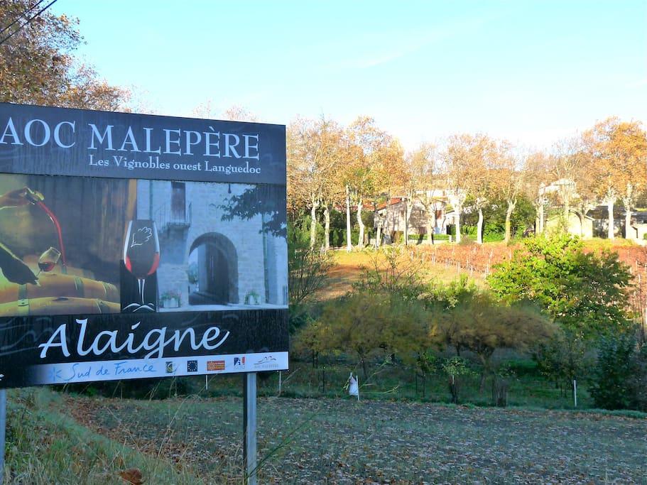 Road into Alaigne our village.
