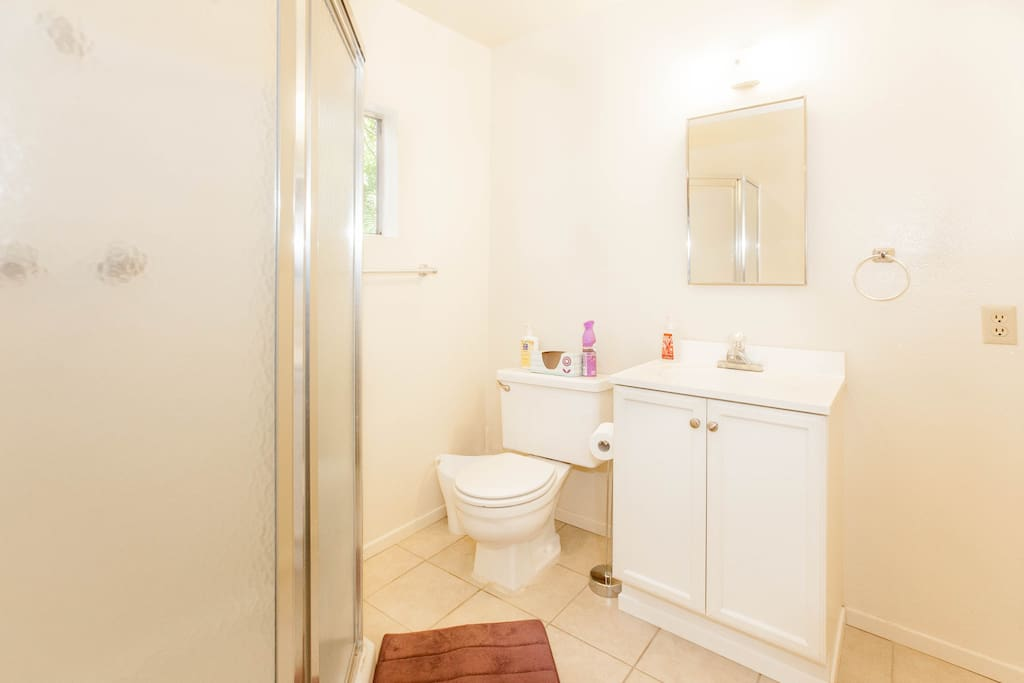 Bathroom with standing shower. Toiletries and other items (blow dryer, cotton swabs, towels all included).