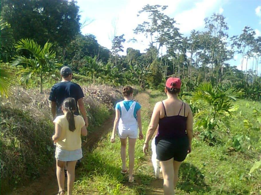 Esta es parte de la finca de ves en cuando mi familia y yo nos damos un paseo por ella para sacarnos del estrés.