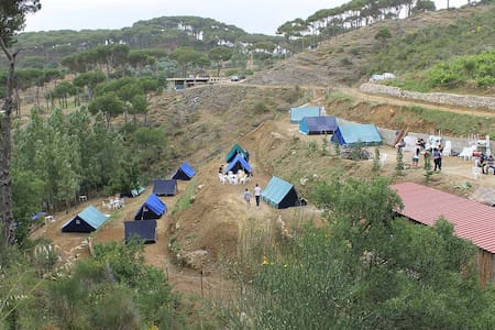 Pinea Campus - Campground in Jezzin - Stan