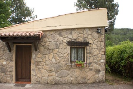 Abedul bungalow in nature (4-6 pax) - Cabin