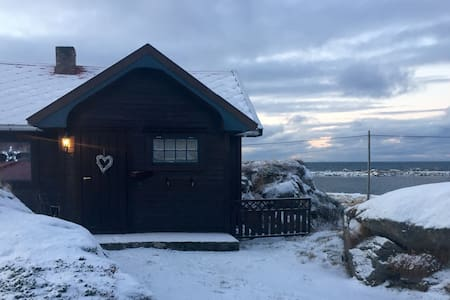 Cabin in the middle of Lofoten - Cottage