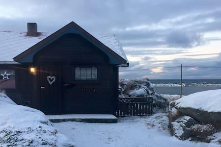 Cabin in the middle of Lofoten - Casa de campo