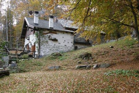 Casa vacanze il Galletto - Crodo - House