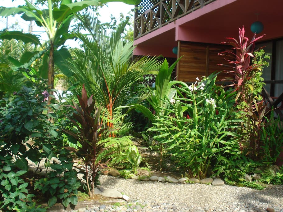 Tropical garden view from balcony's