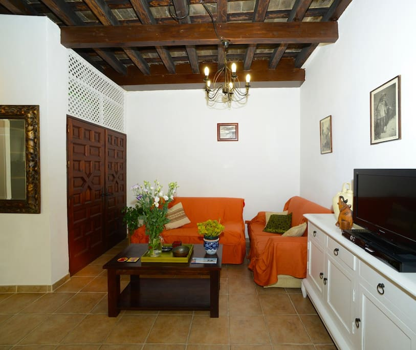 Livingroom with WIFI, airco/heating, and a bed-sofa for 2 persons/ Salón con WIFI, aire frio/calor y una sofa-cama para 2 personas