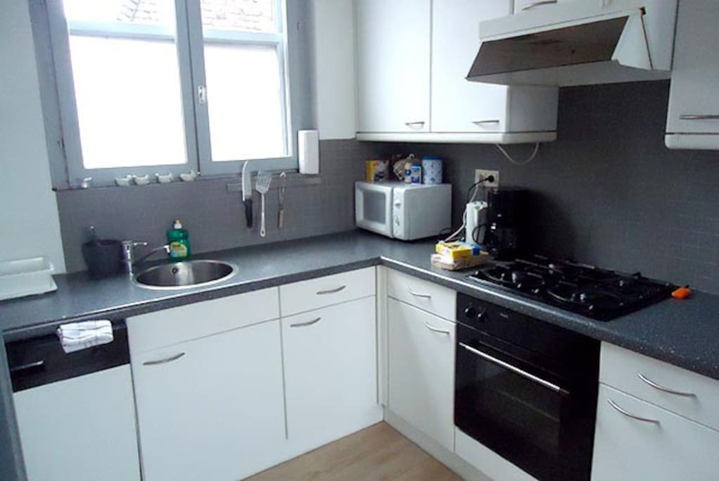 Fully equipped kitchen (dishwasher, fridge, oven, microwave, gas cooking)