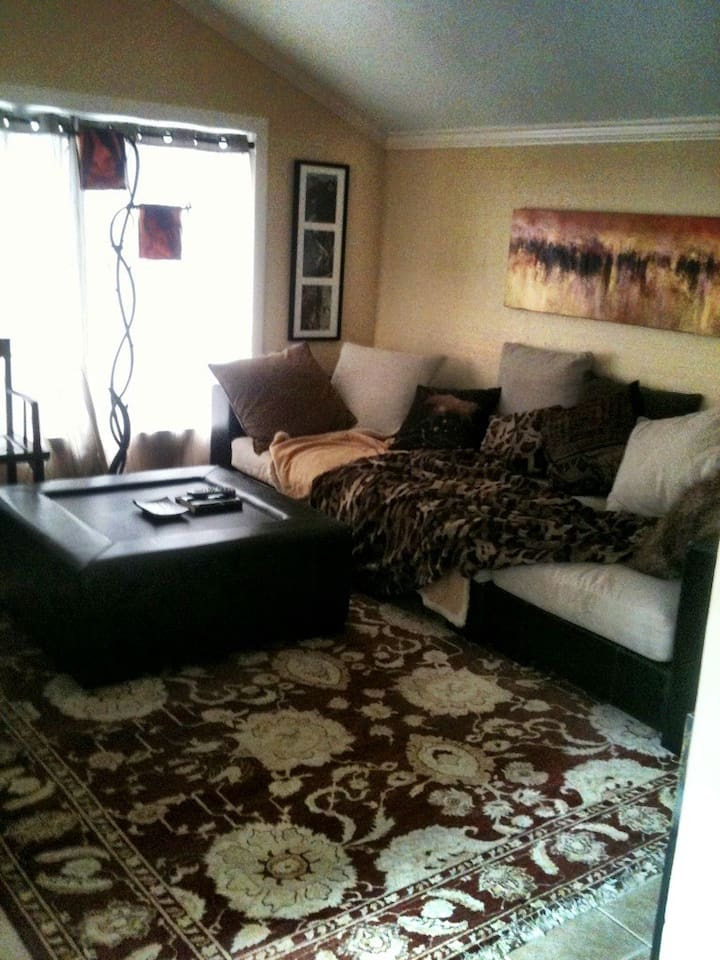 LIVING ROOM, enjoy the art that surrounds this room., flat screen TV. Hbo, showtime. Wifi.