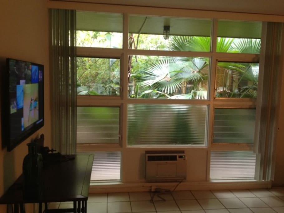 Flatscreen w/ netflix and HBO. Surrounded by trees in courtyard. Blinds close for privacy.