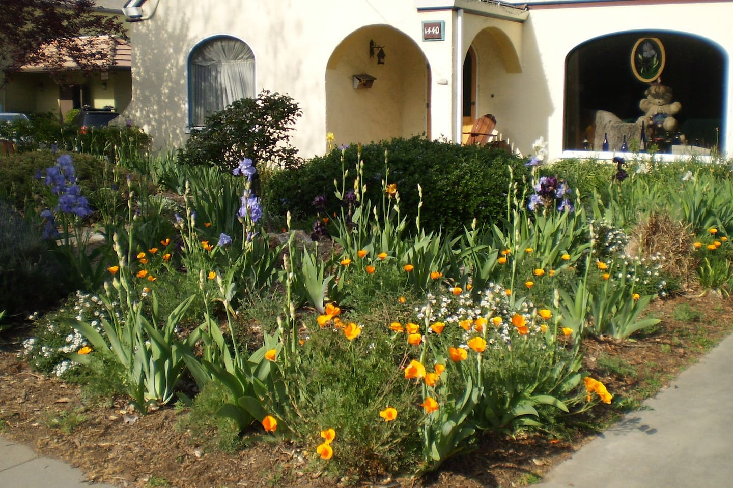 Front yard abloom in Spring to welcome you. Your room is on the left with the arched window.