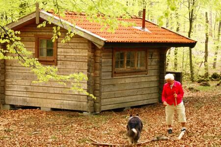 Utmarken cottage forest natural silence recreation - Kabin