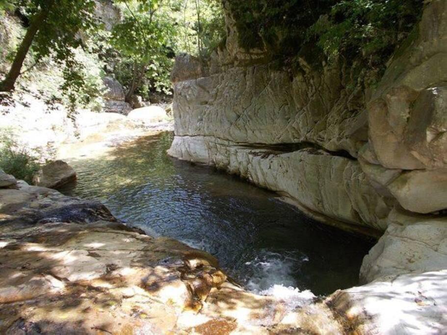 A 10 min walk to gorgeous river