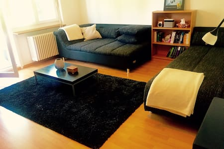 Two room apartment Zurich beautifully located - Zürich - Appartement