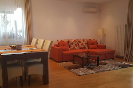 spacious apartment near the forest - Voluntari