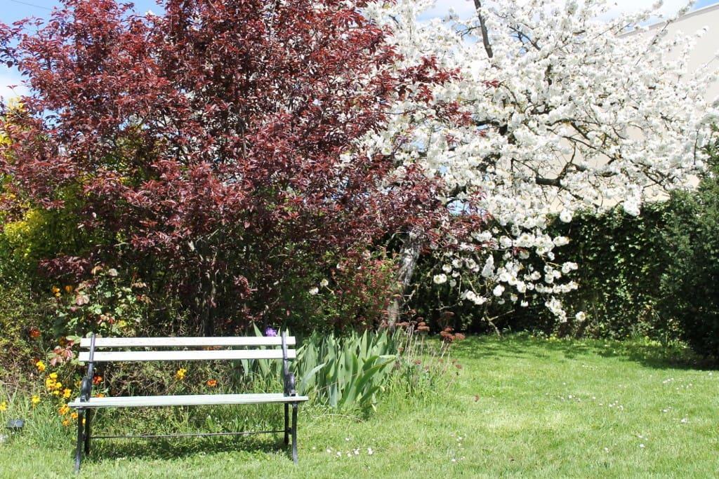 Une pause dans le jardin