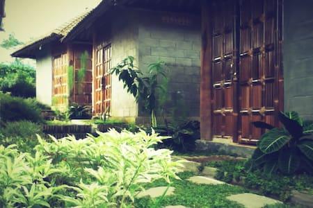 Pondok Bamboo Sendangsari, Dieng - Wonosobo