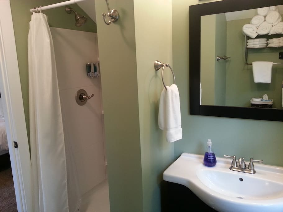 The bathroom vanity and shower