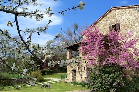 Il Poggio - Country Villa with Pool - Sansepolcro - Villa