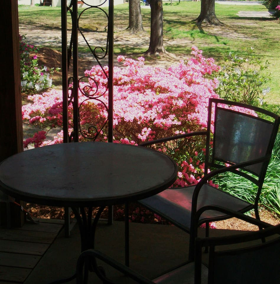 Many private covered sitting areas in our gardens.  Great place to kick back and watch nature enjoy conversation read relax nap write surf play.