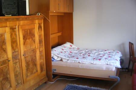 Appartment in Toplage großer Balkon - Freiburg - Apartament