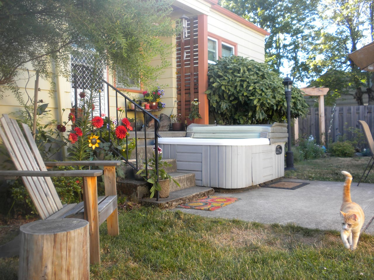 Amazing private backyard with summer blooms, hot tub, grill and patio.  Roaming outdoor cat, Nizzle, not included