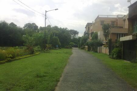 Peaceful  green corner in Alipore