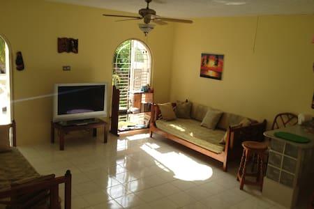Newly renovated Ocean View Condo - Ocho Rios - Apartment