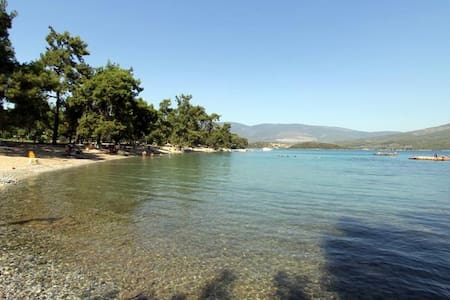 House Among Forest & Private Beach  - Mugla