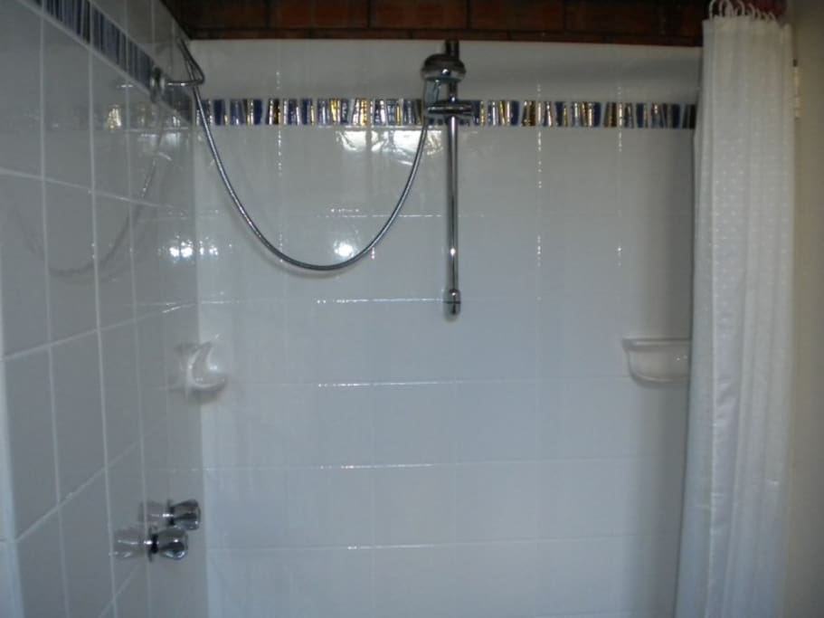 PRIVATE SHOWER (all new).. IN THE APARTMENT.