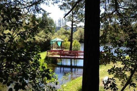 Monkey House/Trinity Alps priv lake - Junction City - House