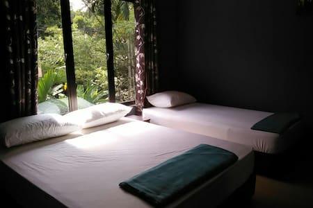 GREEN PEACE SUNGAI LEMBING 3 PAX - Sungai Lembing