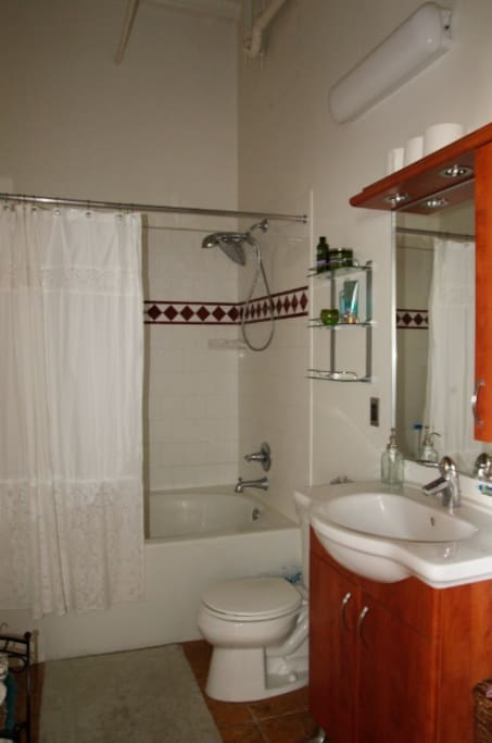 Bathroom with large soaking tub and rain shower head