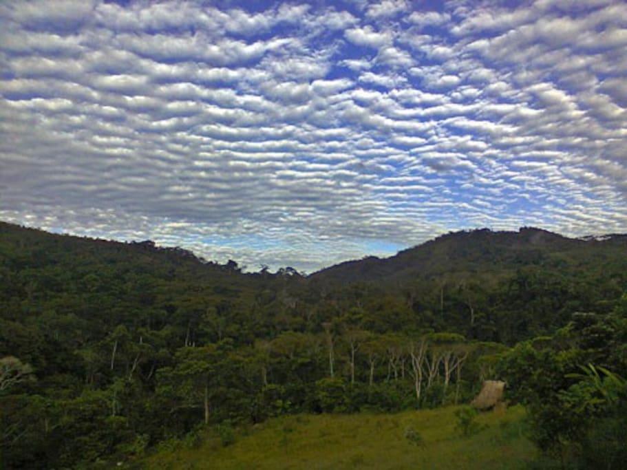 La Selva peruana!